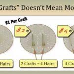 Hair graft cost